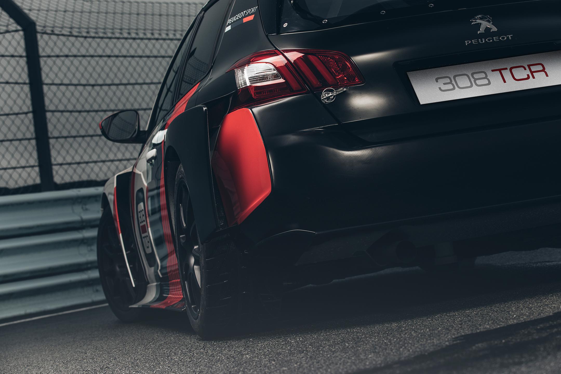 Peugeot 308TCR - 2018 - rear / arrière - zoom