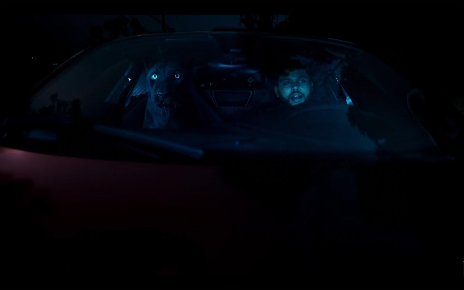 Starboy - The Weeknd - cat - McLaren P1 - onboard