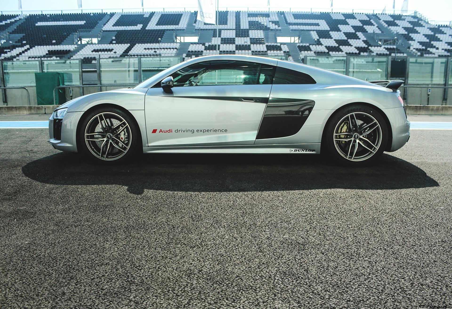 Audi R8 V10 Plus - profil / side-face - photo Arnaud Demasier