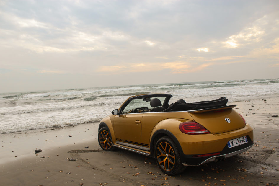 vwcox47-volkswagen-coccinelle-dune-cabriolet-arriere-rear-arnaud-demasier-rsphotographie