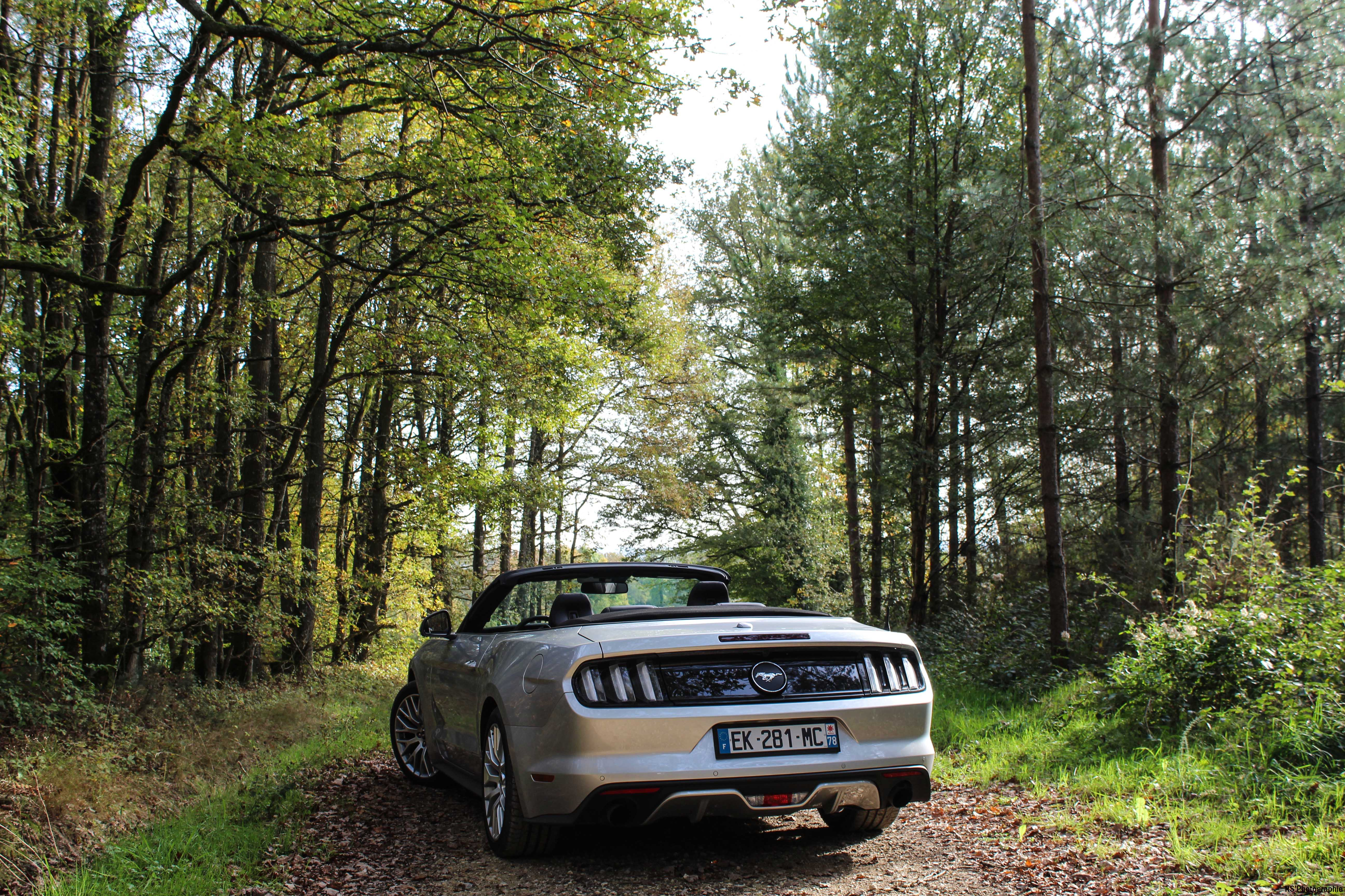 fordmustangeconvertible47-ford-mustang-convertible-ecoboost-arriere-rear-Arnaud Demasier-RSPhotographie
