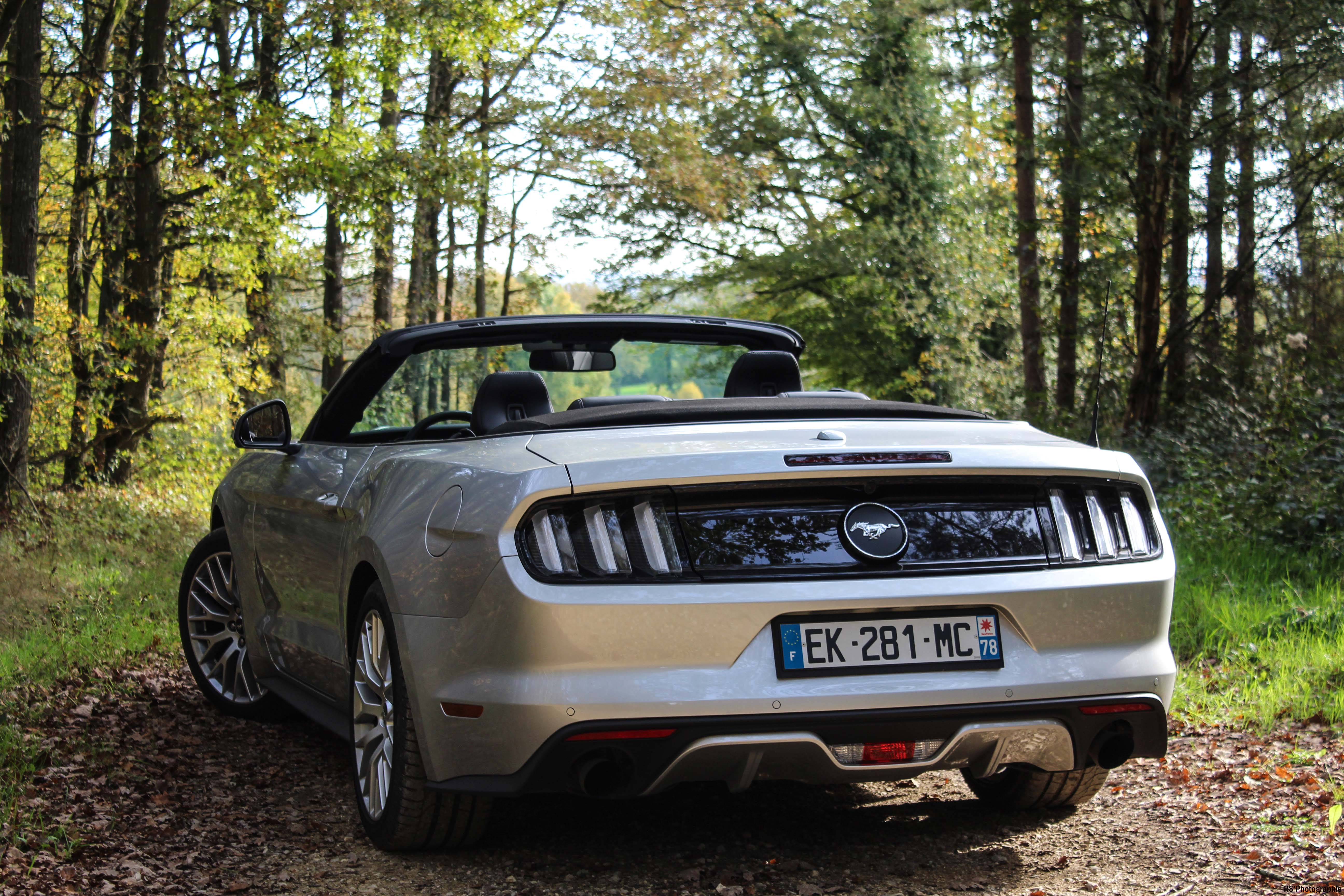 fordmustangeconvertible48-ford-mustang-convertible-ecoboost-arriere-rear-Arnaud Demasier-RSPhotographie