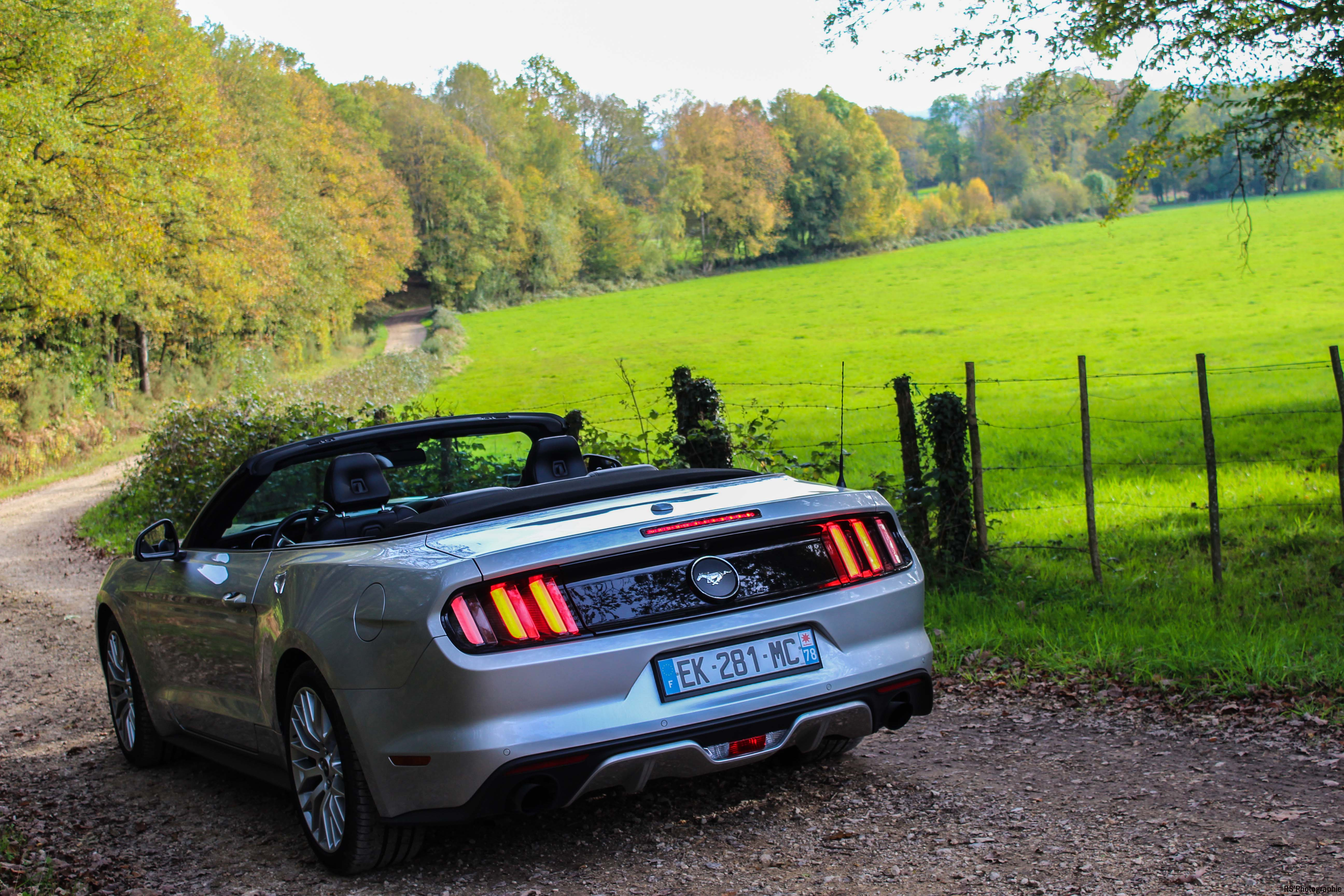 fordmustangeconvertible61-ford-mustang-convertible-ecoboost-arrière-rear-Arnaud Demasier-RSPhotographie