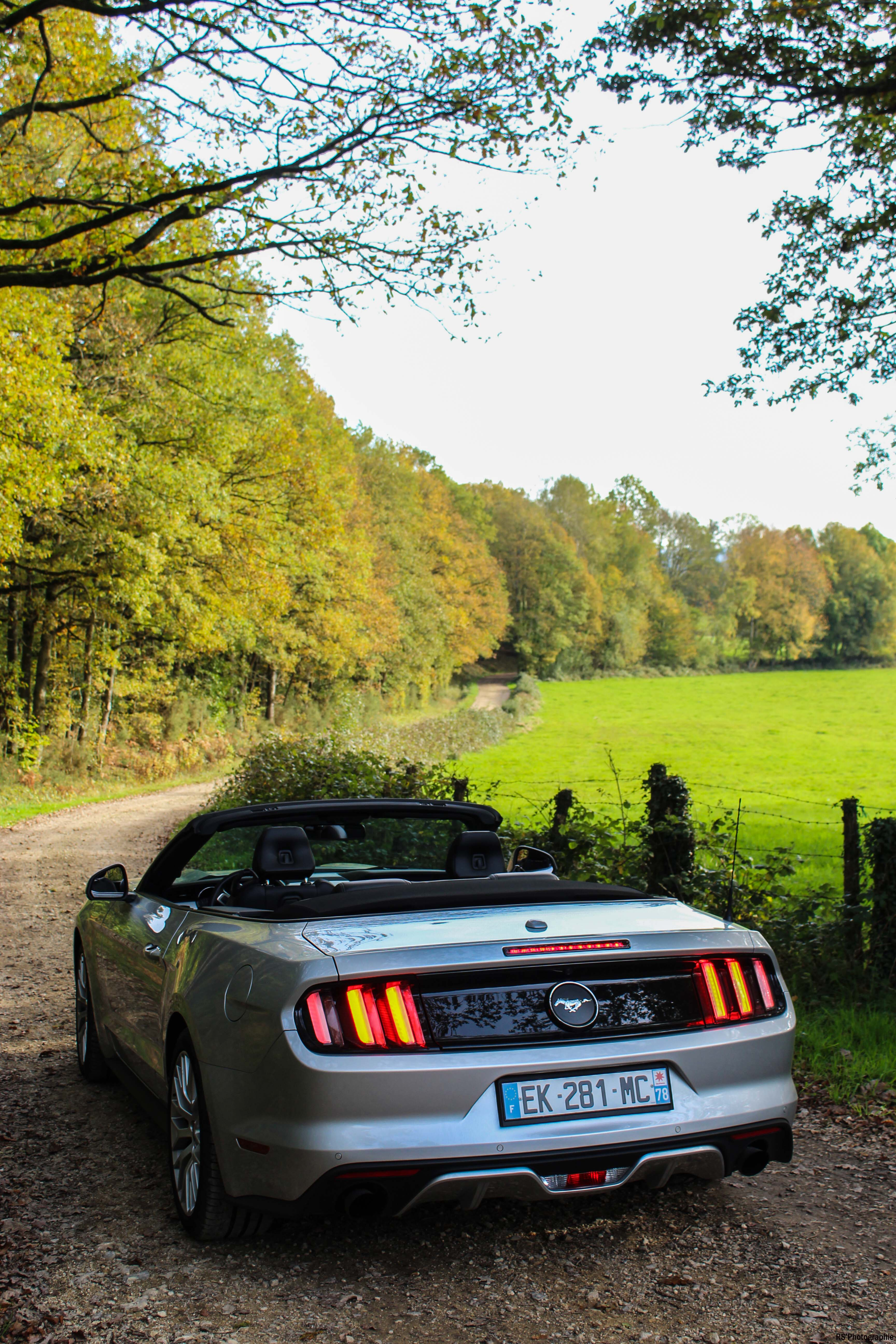 fordmustangeconvertible62-ford-mustang-convertible-ecoboost-arrière-rear-Arnaud Demasier-RSPhotographie