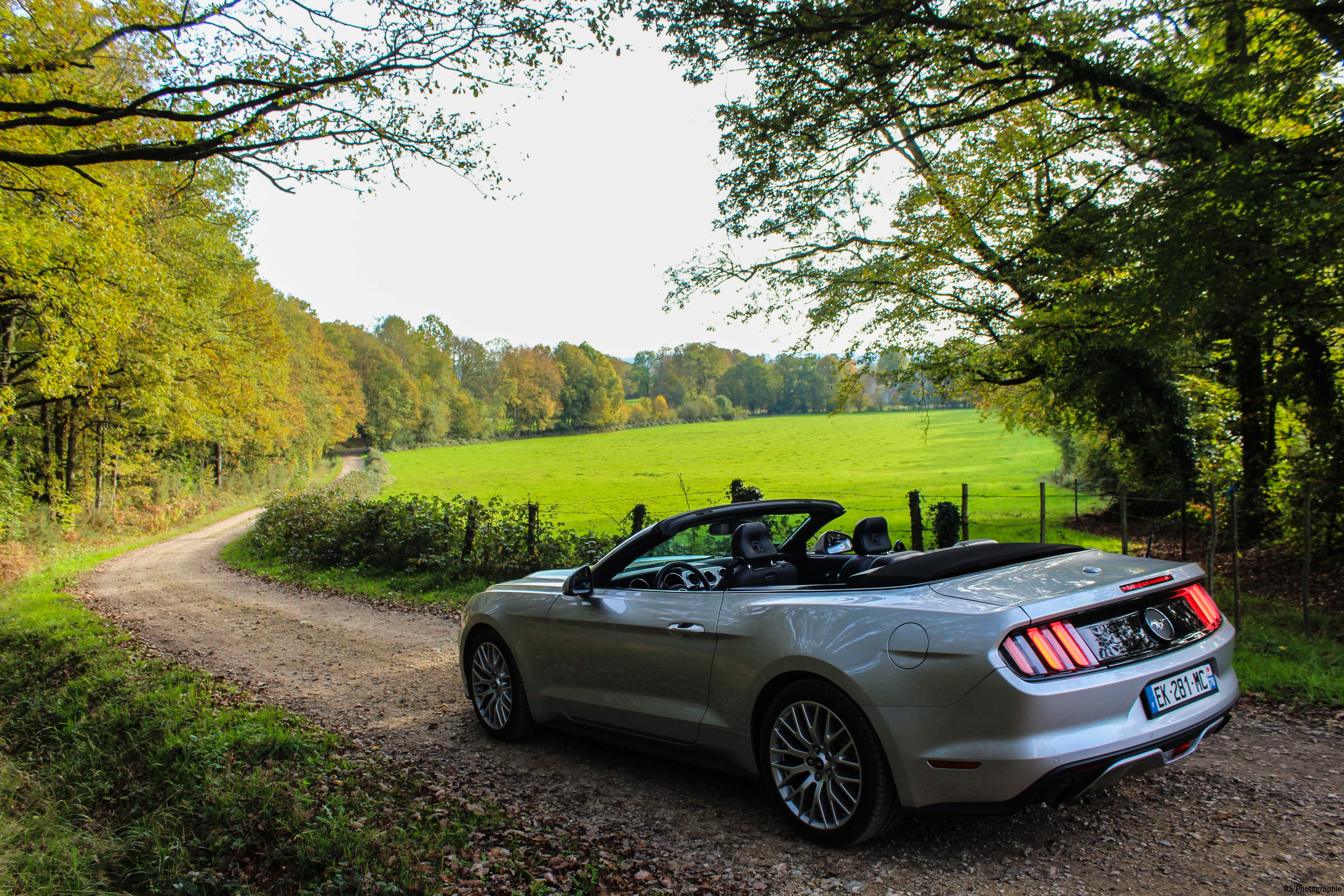 fordmustangeconvertible65-ford-mustang-convertible-ecoboost-arrière-rear-Arnaud Demasier-RSPhotographie