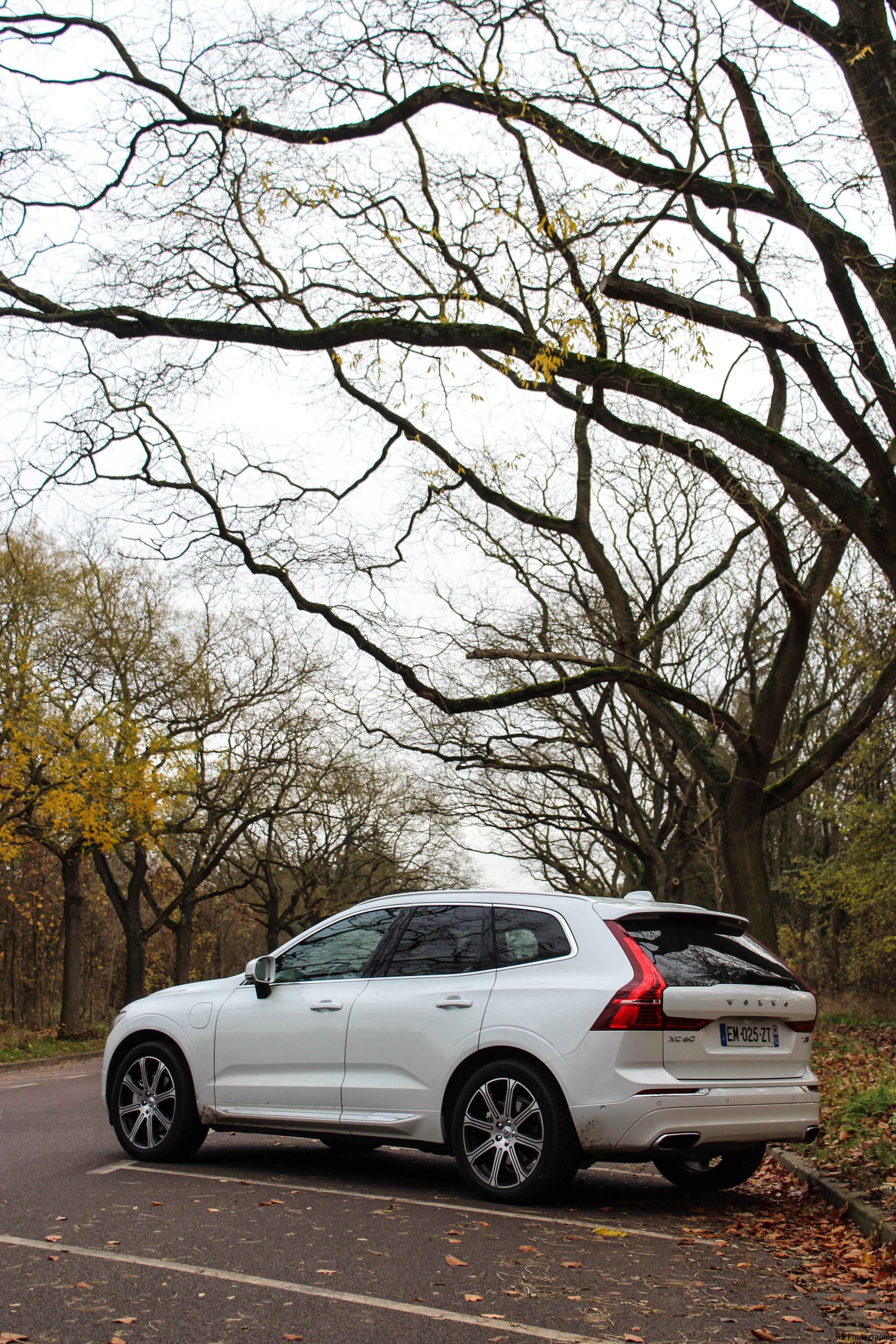 volvoXC6021-volvo-XC60-T8-Hybrid-arriere-rear-Arnaud Demasier-RSPhotographie