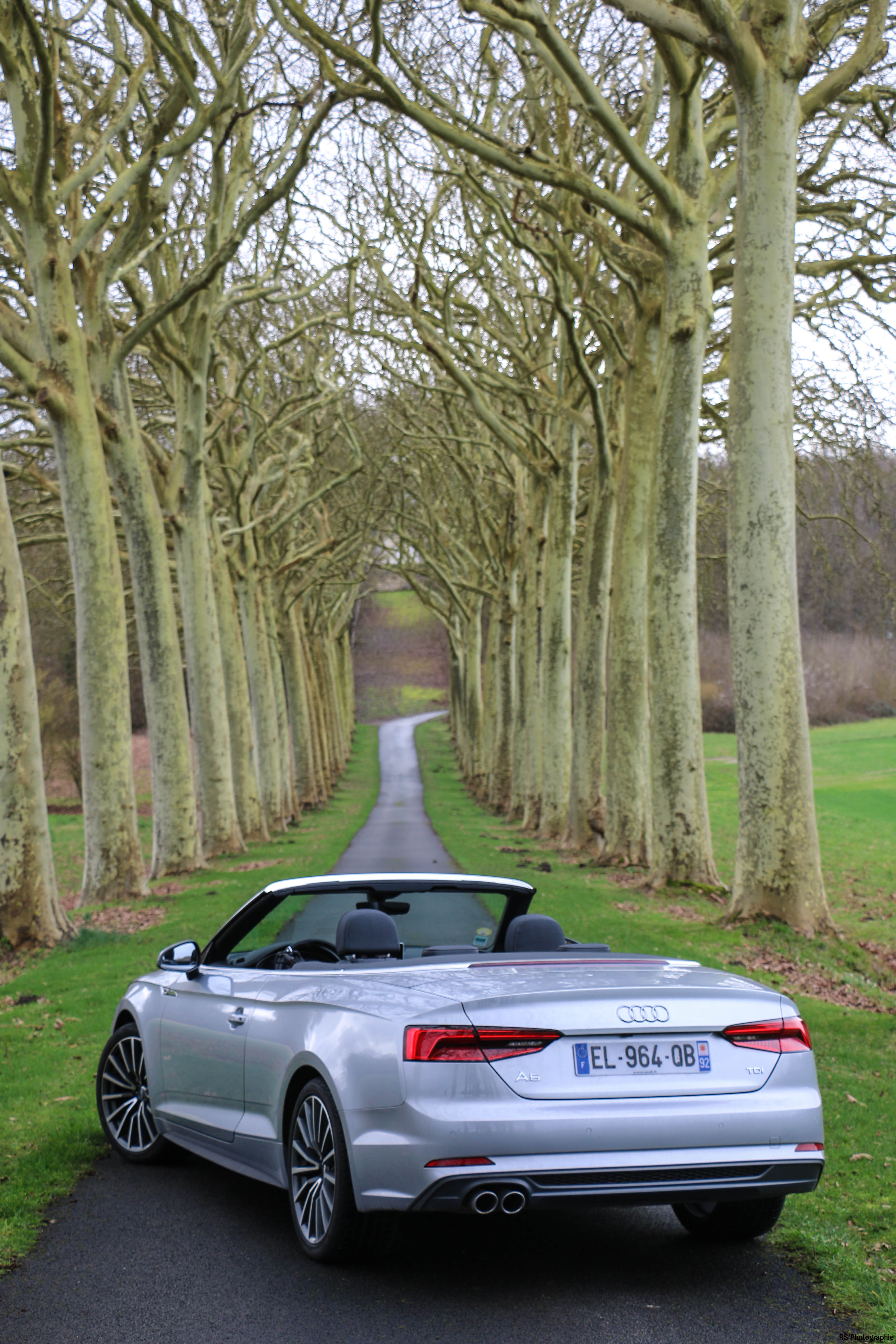 audia5cab2-audi-a5-190-tdi-cabriolet-arriere-rear-Arnaud Demasier-RSPhotographie